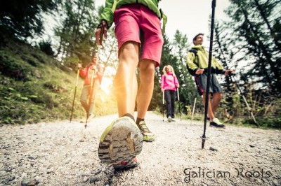 The Camino de Santiago in group