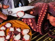 """Pulpo á feira"" (Galician style octopus) workshop"