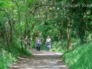 Los últimos 100 kilómetros del Camino Francés con Galician Roots