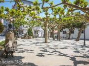 Arzúa Camino de Santiago con Galician Roots