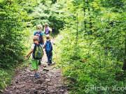 O Camiño de Santiago con familia e con nenos