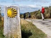 Xacobeo 2022 con Galician Roots