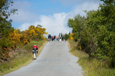The last 100 kms of the Camino de Santiago BASIC