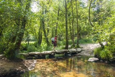 O Camiño de Santiago Primitivo dende Lugo