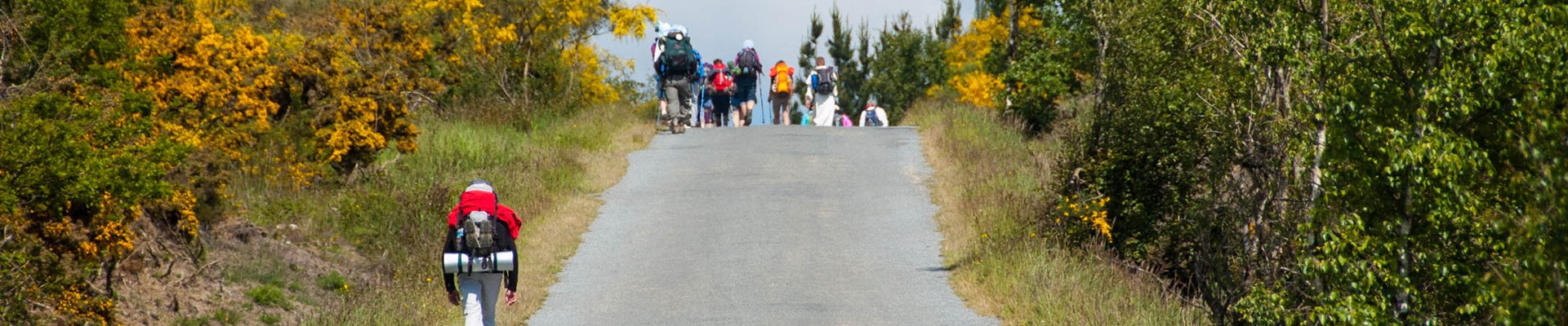 The last 100 kms of the Camino BASIC