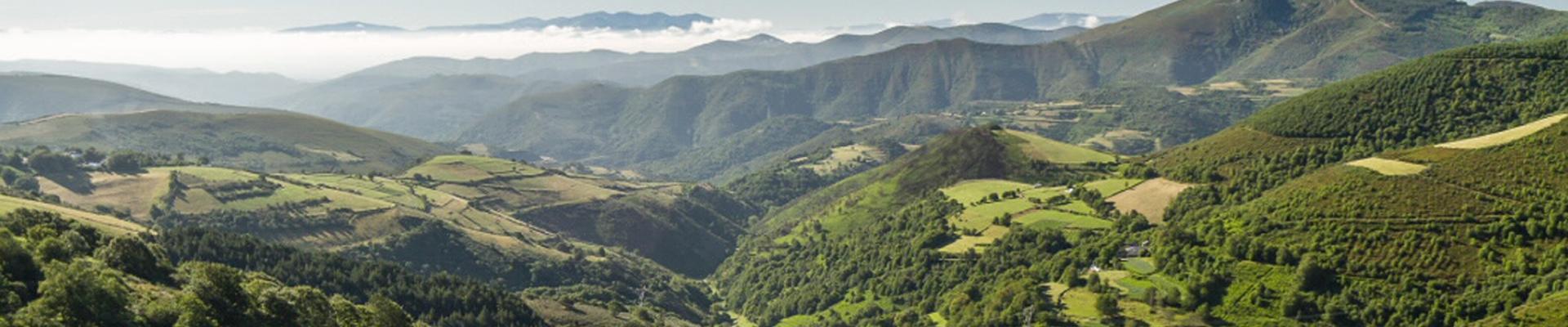 El Camino de Santiago de  LEÓN a O CEBREIRO