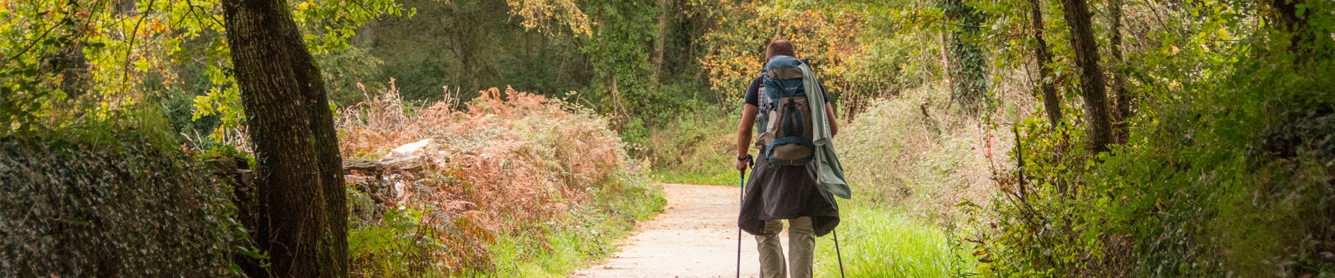 The last 100 kms of the Camino de Santiago RURAL