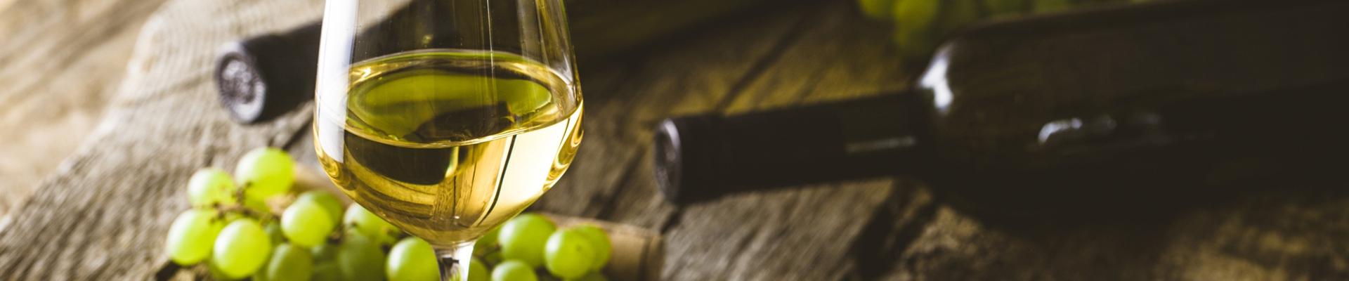 Ruta do viño do Ribeiro