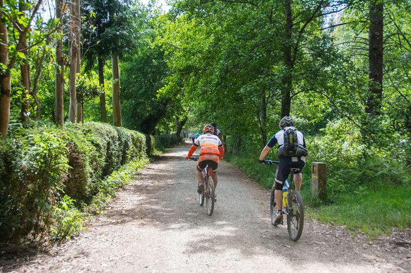 O Camiño de Santiago en bicicleta