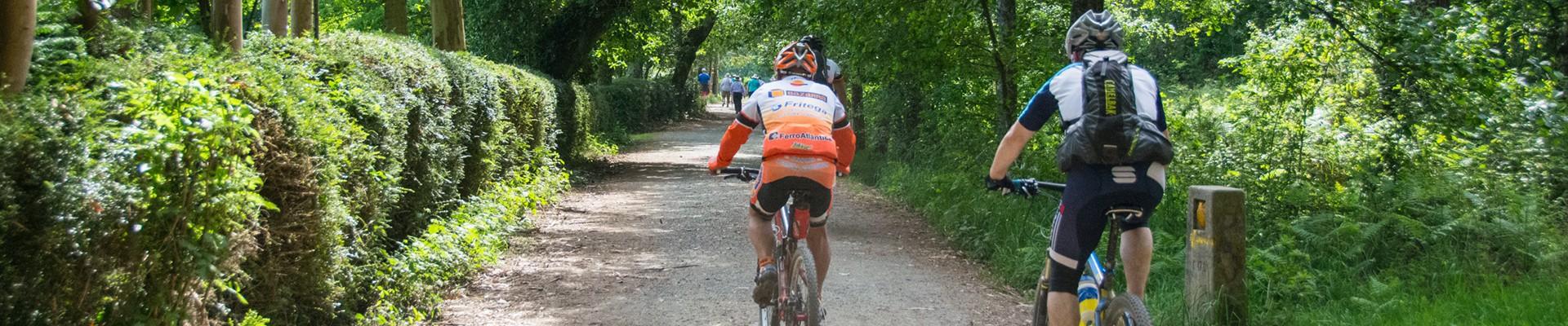 The Camino de Santiago by<strong> bike</strong>